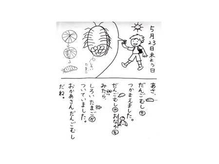nikki3.jpgのサムネール画像