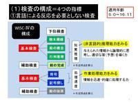 WISCⅣの構成(動作性).jpg