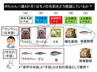 弟Aちゃんの推論.jpg