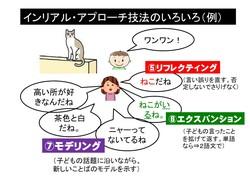 インリアルアプローチ(技法の色々).pptx.jpg