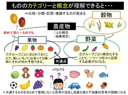 名詞(カテゴリー).jpg