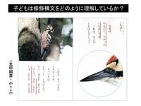 くちばし.pptx.jpg